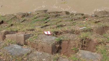 রাজবাড়ীর গোদার বাজারে ফের নদী ভাঙন