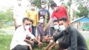 সীতাকুণ্ড উপজেলা ছাত্রলীগের বৃক্ষরোপণ কর্মসূচি