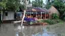 টাঙ্গাইলে এখনও পানির নিচে নিম্নাঞ্চল, স্থায়ী জলাবদ্ধতা