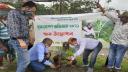 ভোলায় বৃক্ষরোপণ অভিযান শুরু